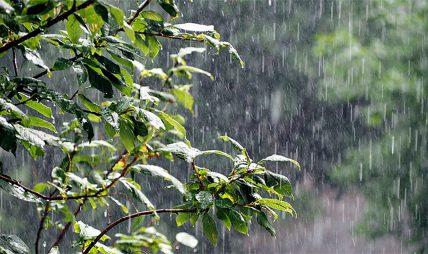 आइतबारसम्म भारी वर्षा हुने मौसम पूर्वानुमान महाशाखाको भनाई
